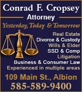 Link to Conrad Cropsey website