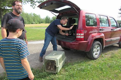 Adam Hazel releasing pheasants