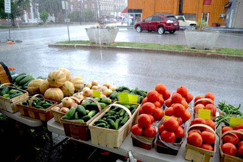 Navarra's vegetables