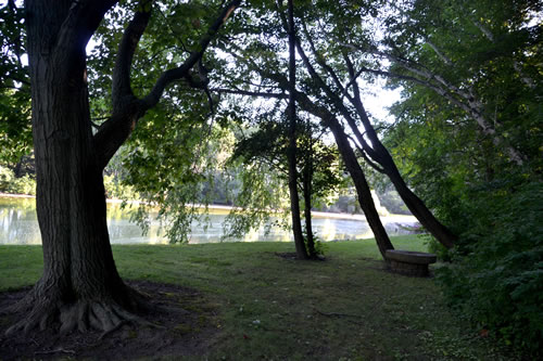 The pond at Robin Hill