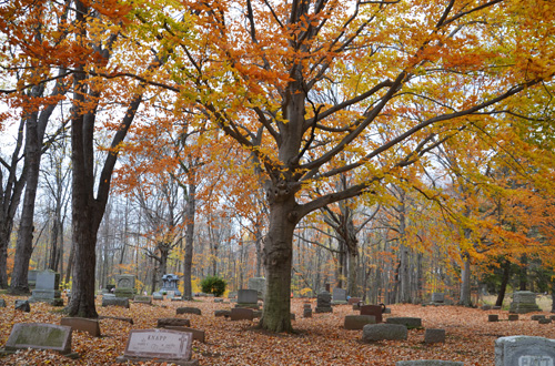 Beechwood Cemetery on Woodchuck Alley in Kendall was established in 1828.