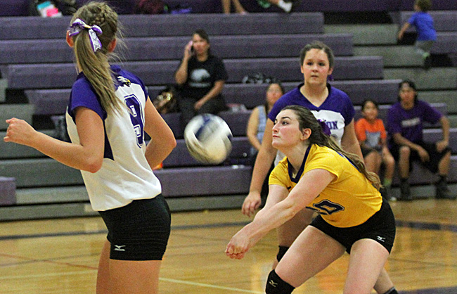 092216_cw_volleyball-2