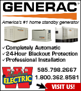 Link to Watts Electric website