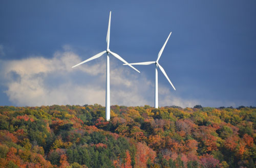 File photo by Tom Rivers: Wind turbines that peak at about 400 feet high are pictured last fall in Sheldon, Wyoming County. The town has 75 turbines that stand high above trees. The turbines proposed for Yates and Somerset would be about 600 feet high.