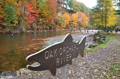 Fishermen try to catch salmon and trout along the Oak Orchard River last October.