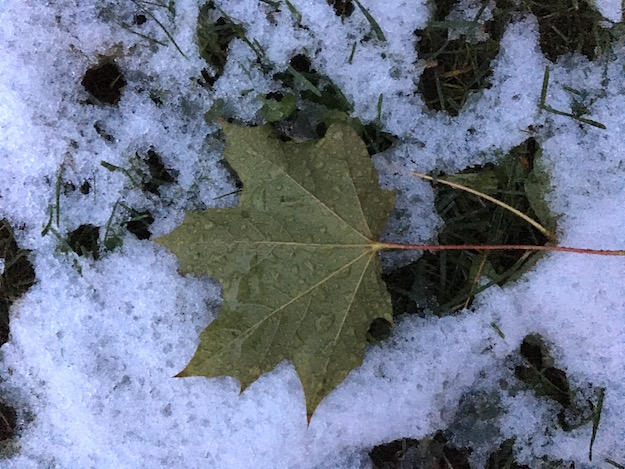 102716_snow
