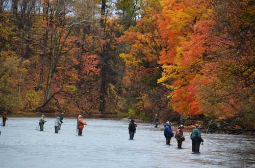 Photo by Tom Rivers: The St. Mary's Archer's Club on the Oak Orchard River in Carlton attracts many out-of-state fishermen each fall. This group is pictured on Oct. 29, 2015. Fishing is the county's leading tourism draw, accounting for about half of the $24 million total.