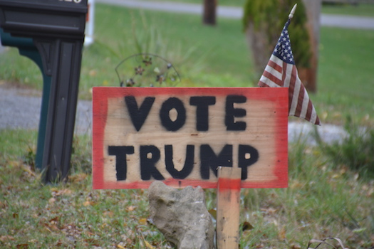 """Photo by Tom Rivers: Richard Coleman of Eagle Harbor Road in Barre made this sign with his grandson. """"Your putting your stamp out there, rather than somebody else's,"""" Coleman said about the home-made sign. Coleman said he supports Donald Trump for his push to strengthen the military and boost the economy."""
