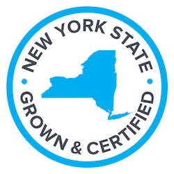 010617_nycertified