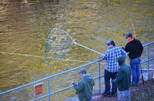 Orleans hub news in orleans county new york for Oak orchard fishing report 2017