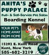 4343 Puppy Palace