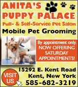 4344 Puppy Palace