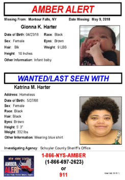 Amber alert issued for baby abducted in Montour Falls
