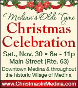 Link to Christmas in Medina website