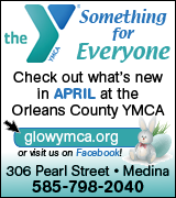 Link to YMCA program guide