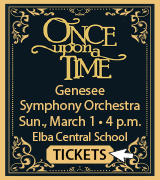 Link to Genesee Symphony Orchestra website