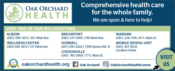Link to Oak Orchard Health website