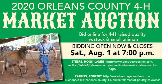 Link to Bontrager Auction website for 4-H market auction