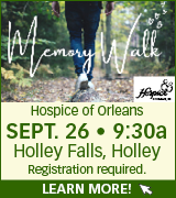Link to Hospice of Orleans website