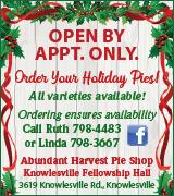 7295 Knowlesville UMC Pies