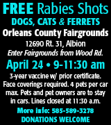 152-45 OC Rabies Clinic