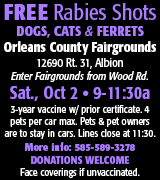 175-41 Rabies Clinic 10/2